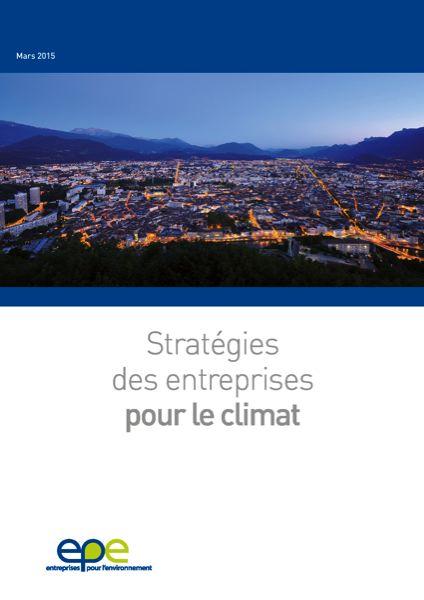 Stratégies des entreprises pour le climat